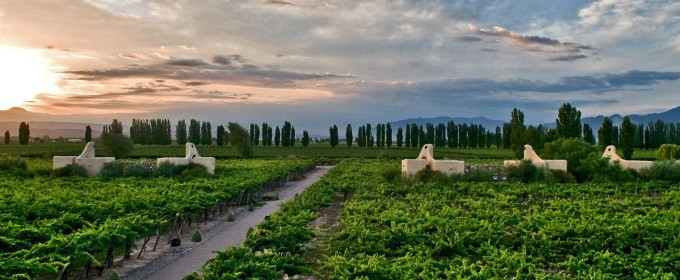 Cavas Wine Lodge in Mendoza