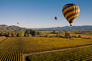 Hot Ballon Over Napa Valley