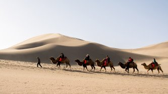 Riding camel on silk road