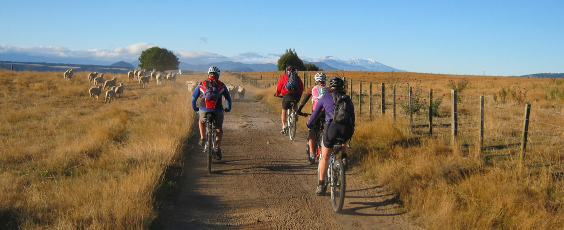 Huka Lodge - Cycling