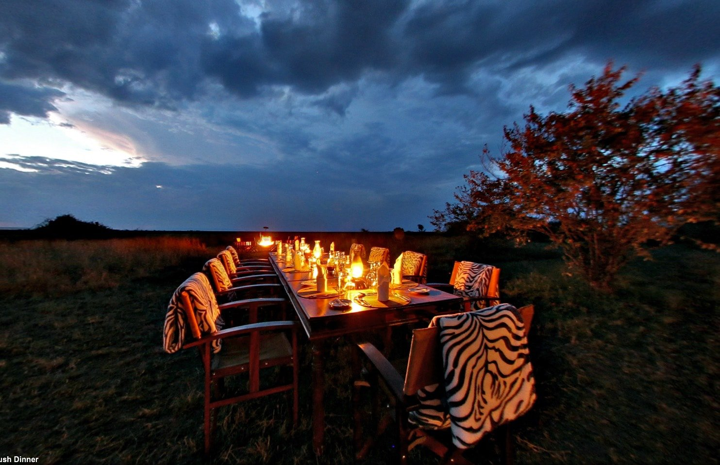 Mara Plains Camp - Bush Dinner